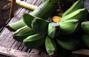 banane-verte