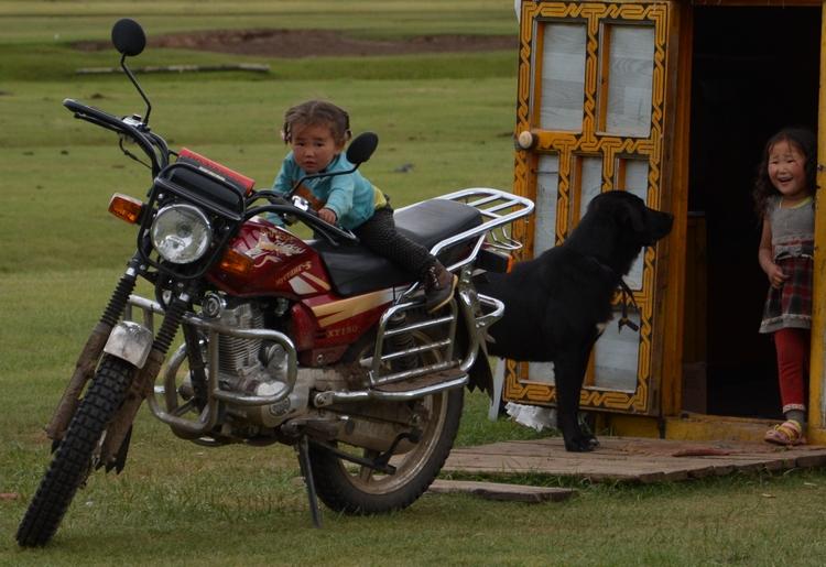 Le piège des parcs nationaux en Mongolie
