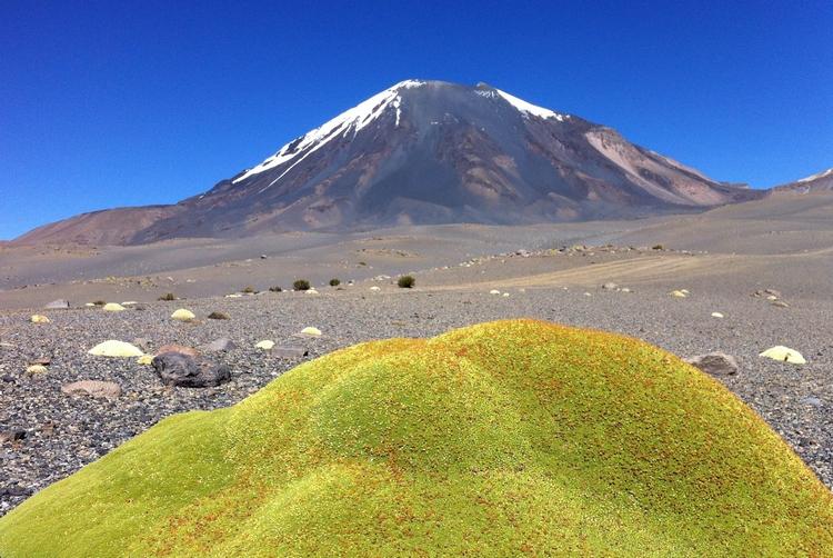 Ascension du Parinacota (6348m), volcan de Bolivie