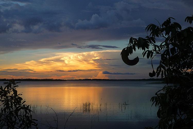 Le fleuve Amazone en catamaran