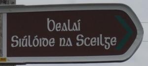 dialecte gaélique