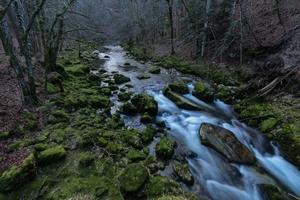 photo ruisseau