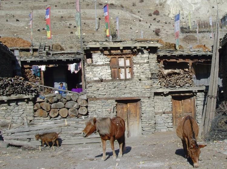 maison népalaise