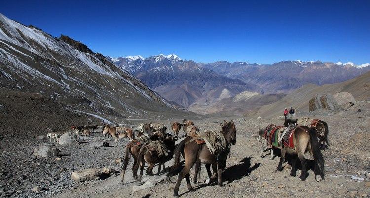 paysage du nepal