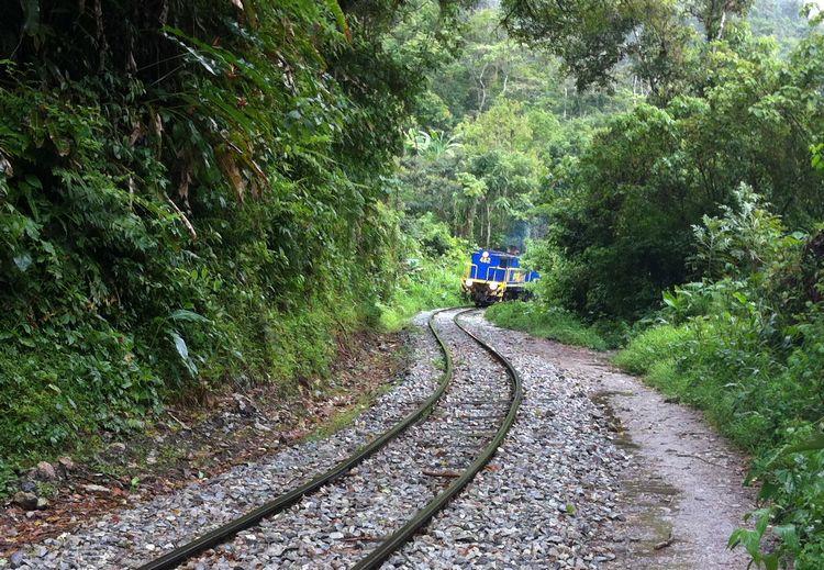 train hidroelectrica agua clientes